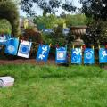 Cyanotypes images drying out