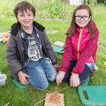 Making willow bird feeders